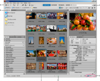 Adobe Bridge CC 6.1.0.115 screenshot. Click to enlarge!