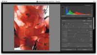 Adobe Lightroom 5.6 screenshot. Click to enlarge!