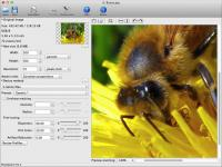 PhotoZoom Pro 5.1.2 screenshot. Click to enlarge!