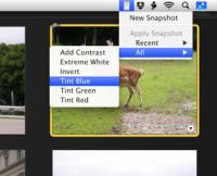 iPhoto Batch Enhancer 3.6 screenshot. Click to enlarge!