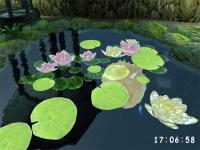 3D Pond screensaver 1.1 screenshot. Click to enlarge!
