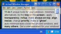 Actual Window Manager 8.10.2 screenshot. Click to enlarge!
