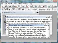 AvniTech WhizNote 3.5.8 screenshot. Click to enlarge!