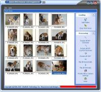 Batch JPEG Rotator 2.19 screenshot. Click to enlarge!