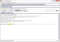 Burp Suite Free Edition 1.7.20 screenshot. Click to enlarge!