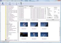 Digital Photo Organizer 1.7 screenshot. Click to enlarge!