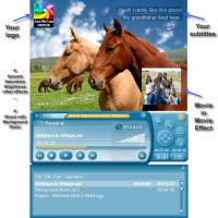 DivX Operational Player 1.35 screenshot. Click to enlarge!