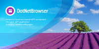DotNetBrowser 1.9 screenshot. Click to enlarge!