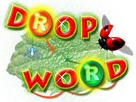 Drop Word 1.0 screenshot. Click to enlarge!