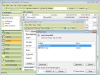 EfficientPIM Free 5.22.530 screenshot. Click to enlarge!