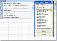 Excel MS Access Import, Export & Convert Software 7.0 screenshot. Click to enlarge!