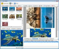 Ez-PicPrint 2.5 screenshot. Click to enlarge!