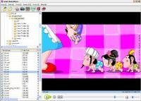Flash Media Player 3.6 screenshot. Click to enlarge!