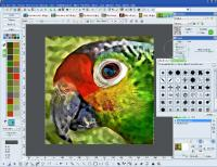 Focus Photoeditor 6.5.8.0 screenshot. Click to enlarge!