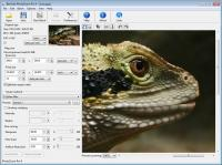 PhotoZoom Pro 4 4.1.2 screenshot. Click to enlarge!