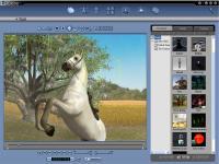 Reallusion iClone Studio Edition 2.5 screenshot. Click to enlarge!