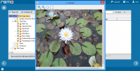 Remo Recover FREE Edition 1.0.0.17 screenshot. Click to enlarge!