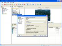 Right Picture Download Manager 2.3 screenshot. Click to enlarge!