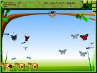 Spider Hunting 2.1 screenshot. Click to enlarge!