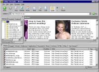 Trellian SiteSpider 1.00.004 screenshot. Click to enlarge!