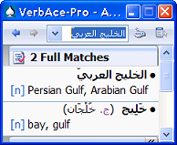 VerbAce-Pro Arabic-English 2.0 screenshot. Click to enlarge!