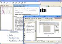 WebCab Optimization for Delphi 2.6 screenshot. Click to enlarge!